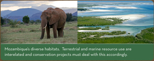 Mozambique's diverse habitats.  Terrestrial and marine resource use are interelated and conservation projects must deal with this accordingly.