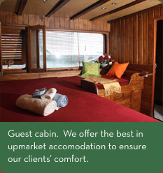 Guest cabin.  We offer the best in upmarket accomodation to ensure our clients' comfort.